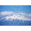 Mt.Fuji