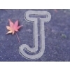 Japanease maple leaf